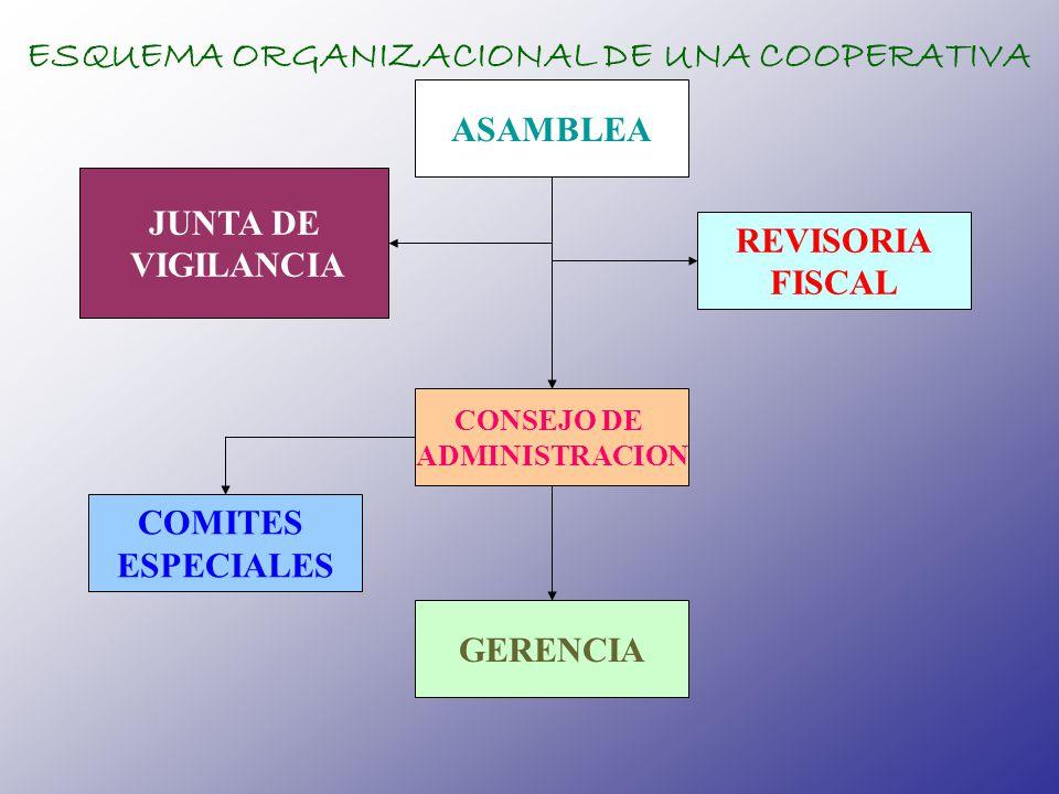 ASAMBLEA JUNTA DE VIGILANCIA CONSEJO DE ADMINISTRACION REVISORIA FISCAL GERENCIA COMITES ESPECIALES ESQUEMA ORGANIZACIONAL DE UNA COOPERATIVA