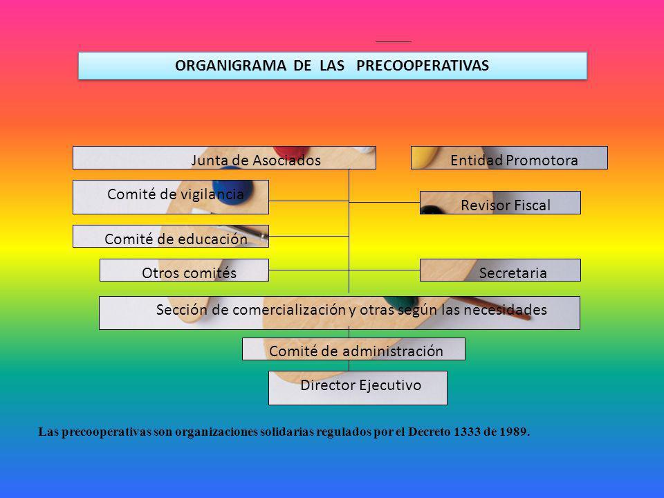 ORGANIGRAMA DE LAS PRECOOPERATIVAS Junta de Asociados Entidad Promotora Comité de vigilancia Comité de educación Otros comités Revisor Fiscal Secretar