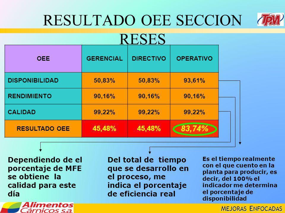 M EJORAS E NFOCADAS RESULTADO OEE SECCION RESES OEEGERENCIALDIRECTIVOOPERATIVO DISPONIBILIDAD50,83% 93,61% RENDIMIENTO90,16% CALIDAD99,22% RESULTADO O