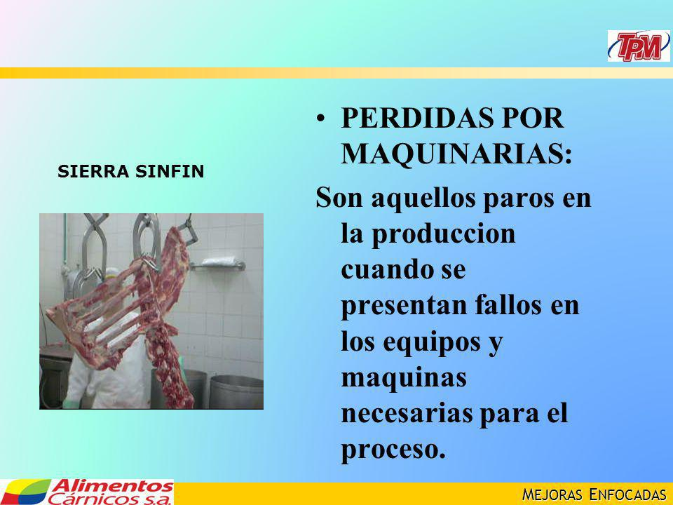 M EJORAS E NFOCADAS PERDIDAS POR MAQUINARIAS: Son aquellos paros en la produccion cuando se presentan fallos en los equipos y maquinas necesarias para