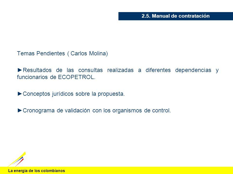 La energía de los colombianos 2.5. Manual de contratación Temas Pendientes ( Carlos Molina) Resultados de las consultas realizadas a diferentes depend
