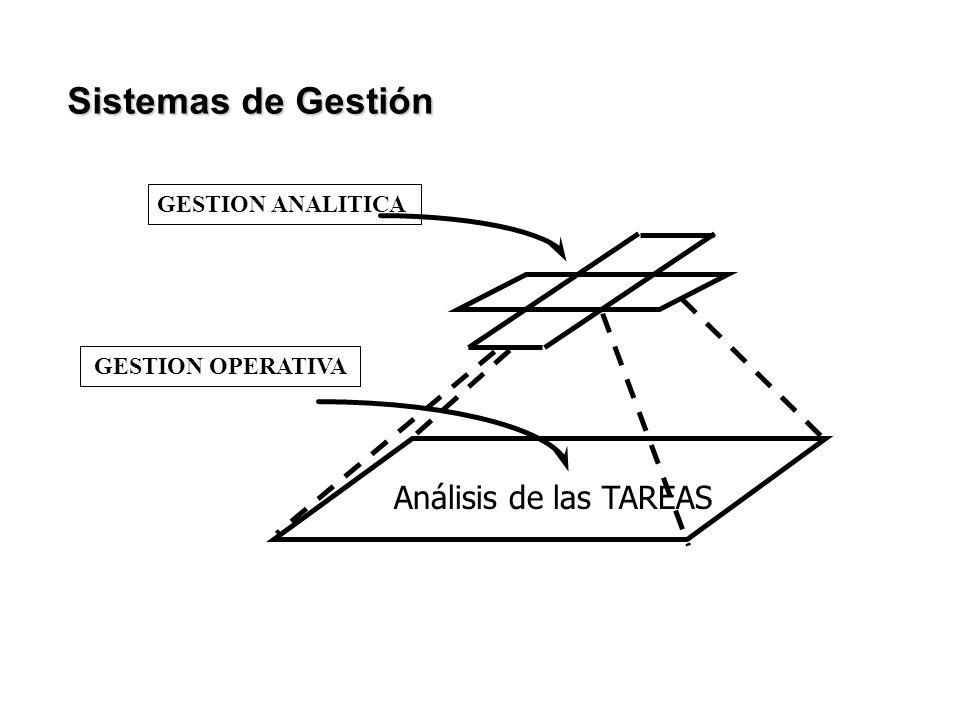GESTION ANALITICA GESTION OPERATIVA Análisis de las TAREAS Sistemas de Gestión