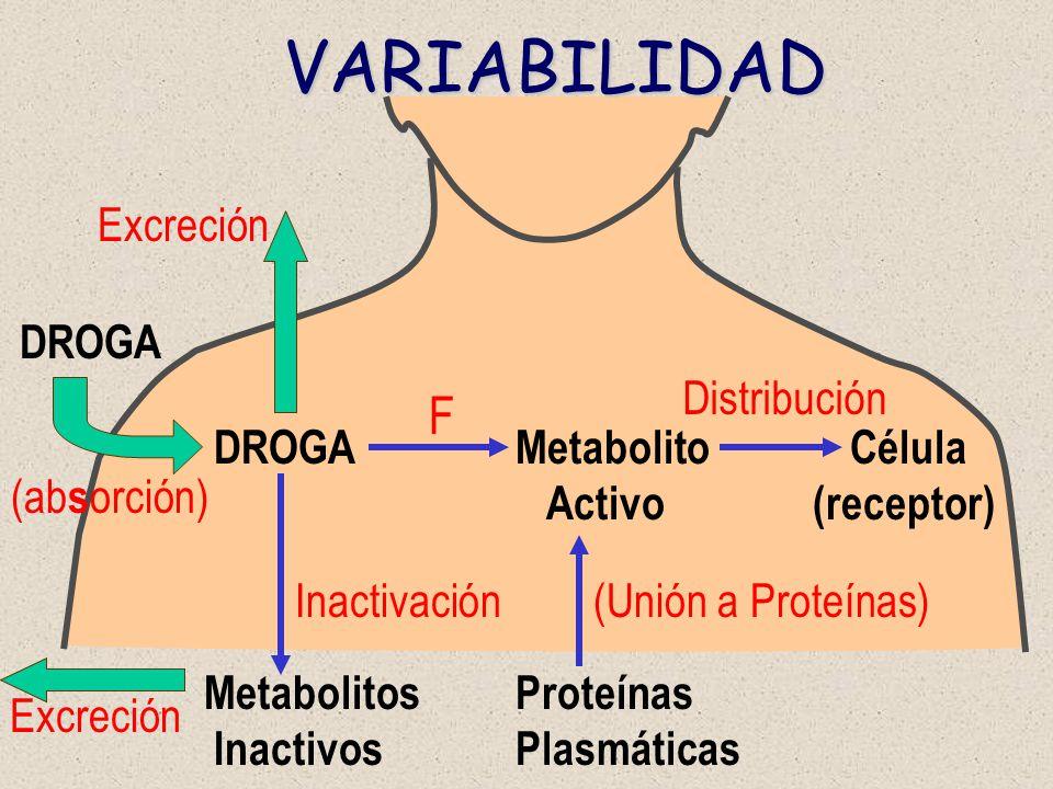 DROGA DROGA Metabolito Célula Activo (receptor) Inactivación (Unión a Proteínas) Metabolitos Proteínas Inactivos Plasmáticas Distribución Excreción (a