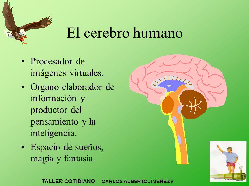 El cerebro humano Procesador de imágenes virtuales. Organo elaborador de información y productor del pensamiento y la inteligencia. Espacio de sueños,