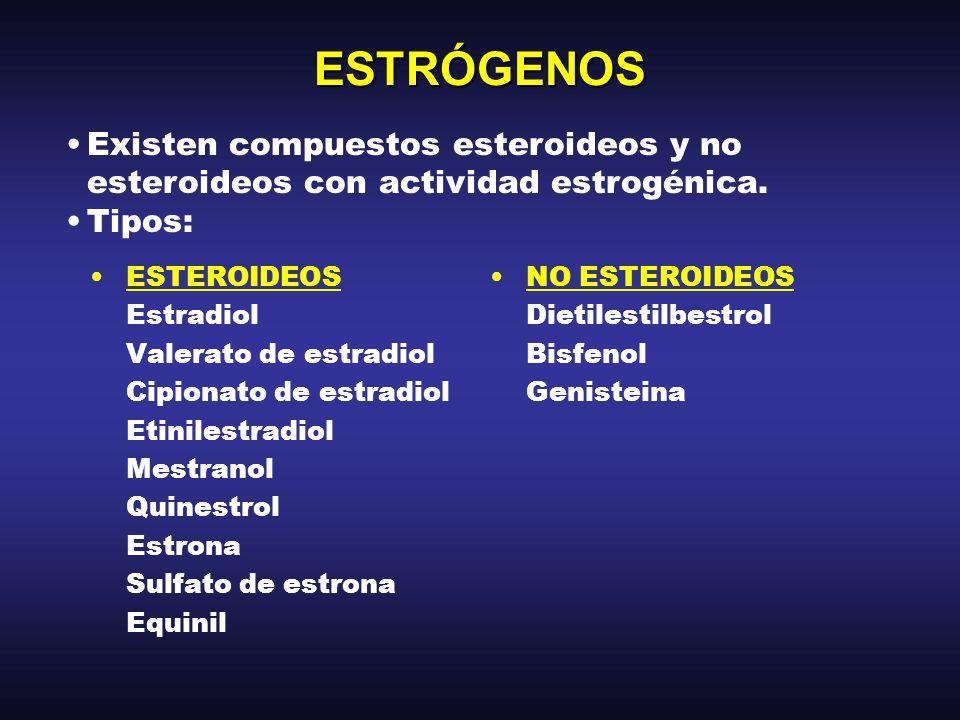 ESTRÓGENOS BIOSÍNTESIS: –Los estrógenos esteroideos se forman a partir de la androstenediona y testosterona.