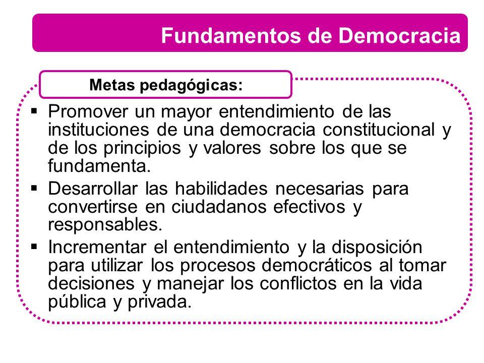 Promover un mayor entendimiento de las instituciones de una democracia constitucional y de los principios y valores sobre los que se fundamenta. Desar