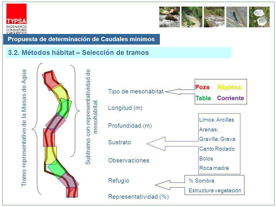 Propuesta de determinación de Caudales mínimos 3.2. Métodos hábitat – Selección de tramos Tramo representativo de la Masas de Agua Subtramo con repres