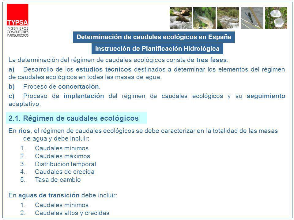 Determinación de caudales ecológicos en España En ríos, el régimen de caudales ecológicos se debe caracterizar en la totalidad de las masas de agua y debe incluir: 1.Caudales mínimos 2.Caudales máximos 3.Distribución temporal 4.Caudales de crecida 5.Tasa de cambio En aguas de transición debe incluir: 1.Caudales mínimos 2.Caudales altos y crecidas La determinación del régimen de caudales ecológicos consta de tres fases: a)Desarrollo de los estudios técnicos destinados a determinar los elementos del régimen de caudales ecológicos en todas las masas de agua.