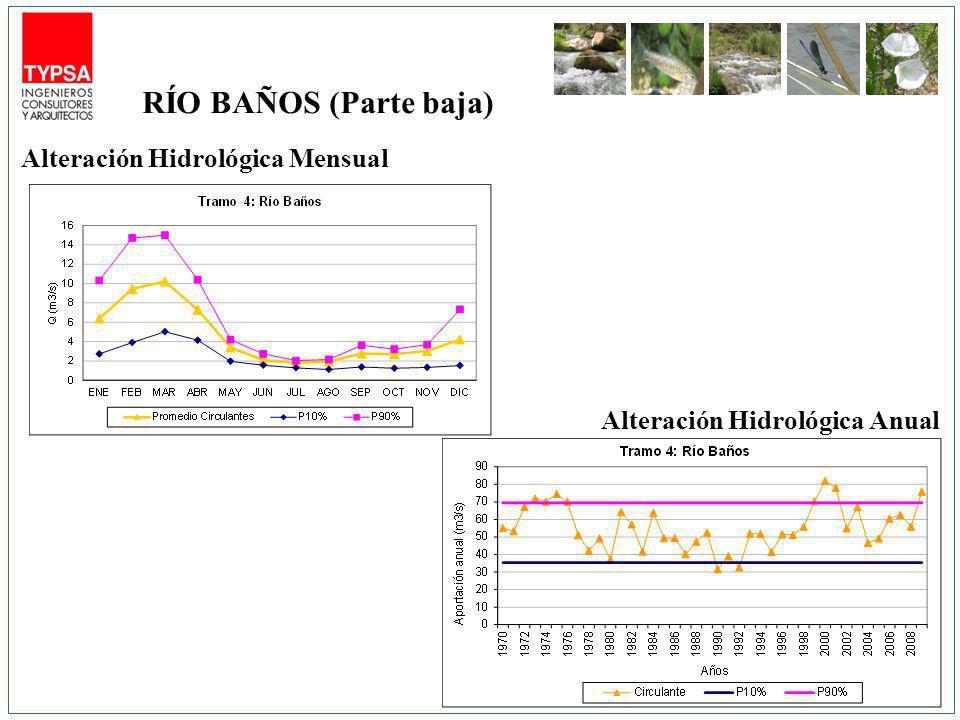 Alteración Hidrológica Mensual Alteración Hidrológica Anual RÍO BAÑOS (Parte baja)