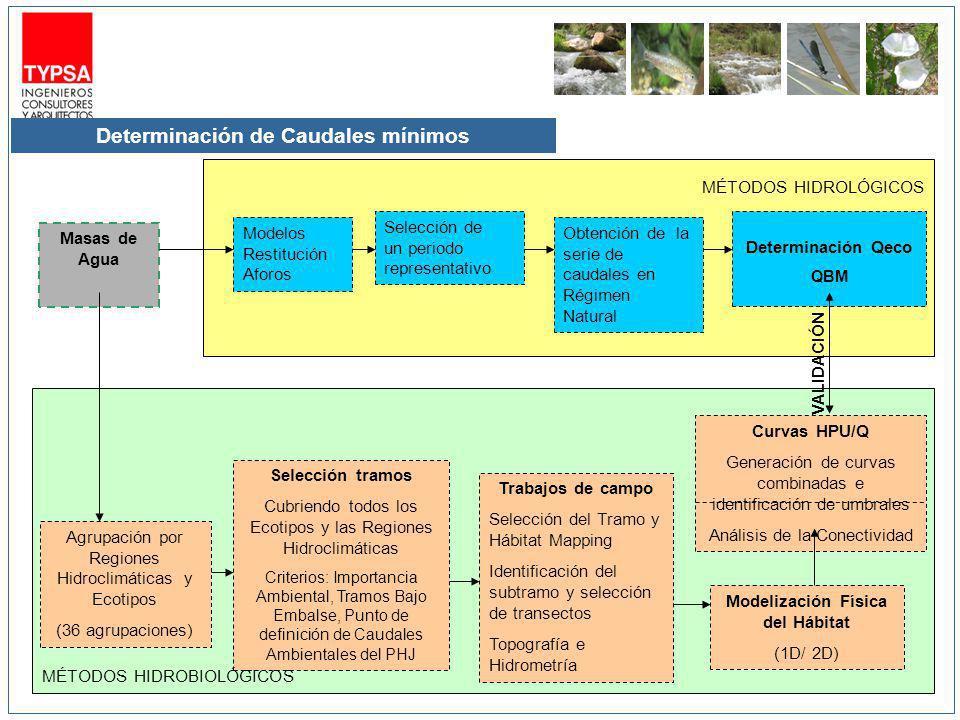Determinación de Caudales mínimos Masas de Agua Modelos Restitución Aforos Selección de un periodo representativo Obtención de la serie de caudales en