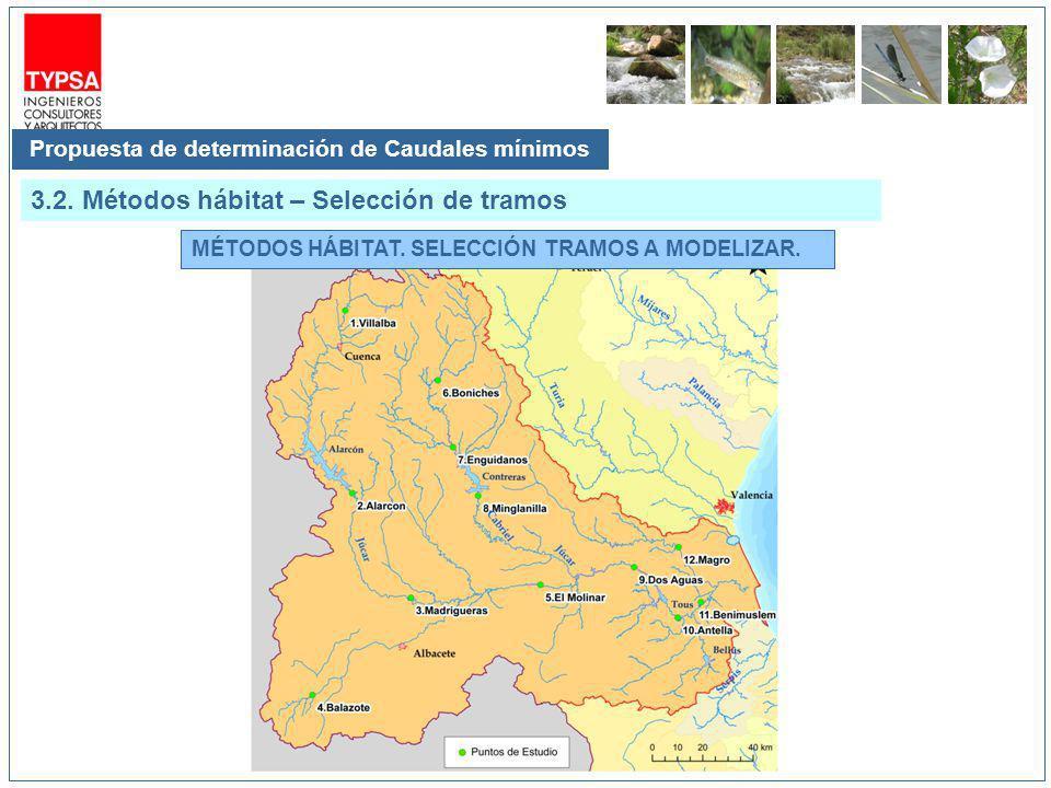 MÉTODOS HÁBITAT. SELECCIÓN TRAMOS A MODELIZAR. Propuesta de determinación de Caudales mínimos 3.2. Métodos hábitat – Selección de tramos