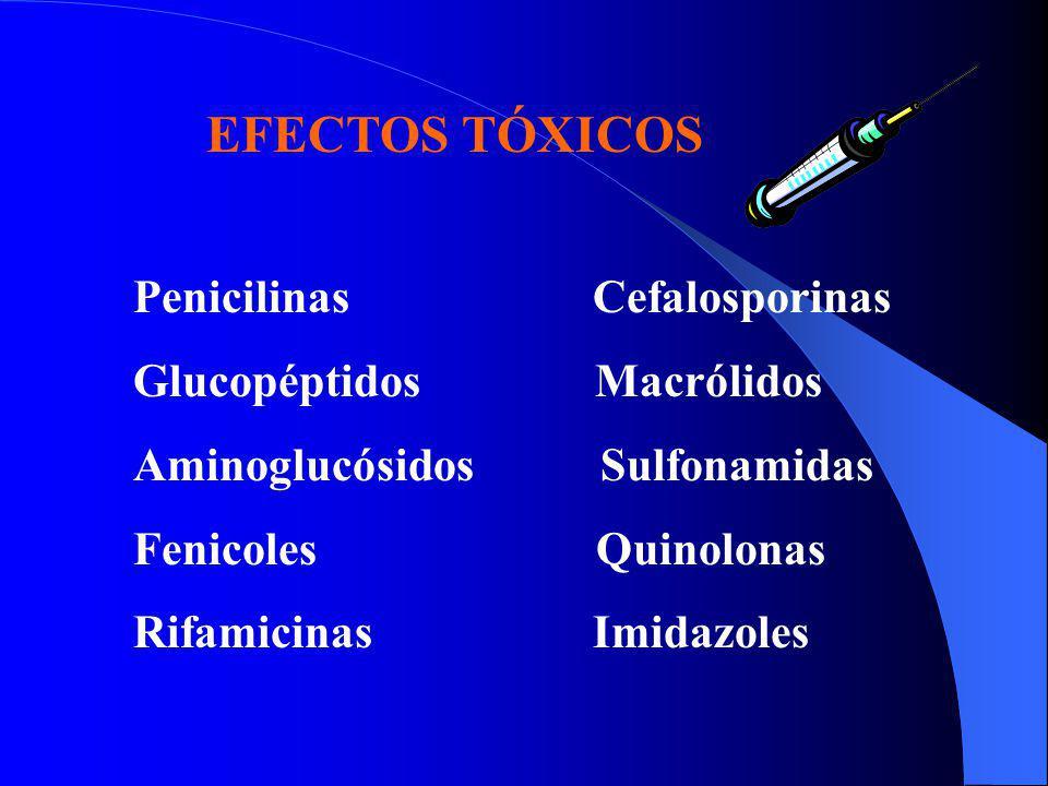 EFECTOS TÓXICOS Penicilinas Cefalosporinas Glucopéptidos Macrólidos Aminoglucósidos Sulfonamidas Fenicoles Quinolonas Rifamicinas Imidazoles