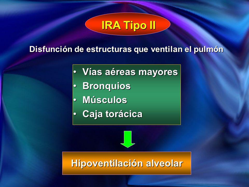Vías aéreas mayoresVías aéreas mayores BronquiosBronquios MúsculosMúsculos Caja torácicaCaja torácica IRA Tipo II Hipoventilación alveolar Disfunción