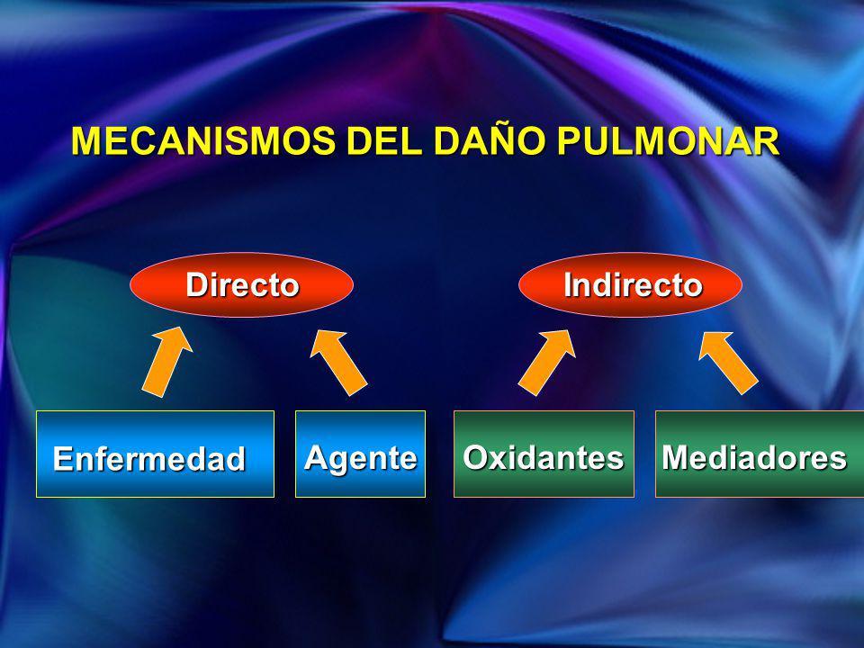 MECANISMOS DEL DAÑO PULMONAR DirectoIndirecto Enfermedad AgenteOxidantesMediadores