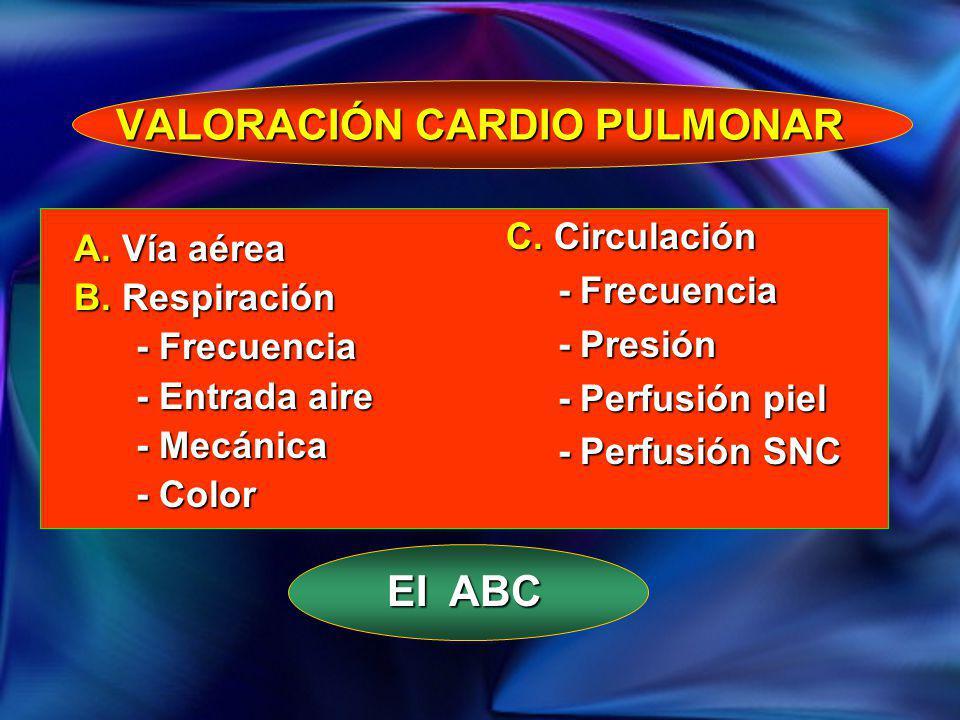 VALORACIÓN CARDIO PULMONAR A. Vía aérea B. Respiración - Frecuencia - Frecuencia - Entrada aire - Entrada aire - Mecánica - Mecánica - Color - Color C