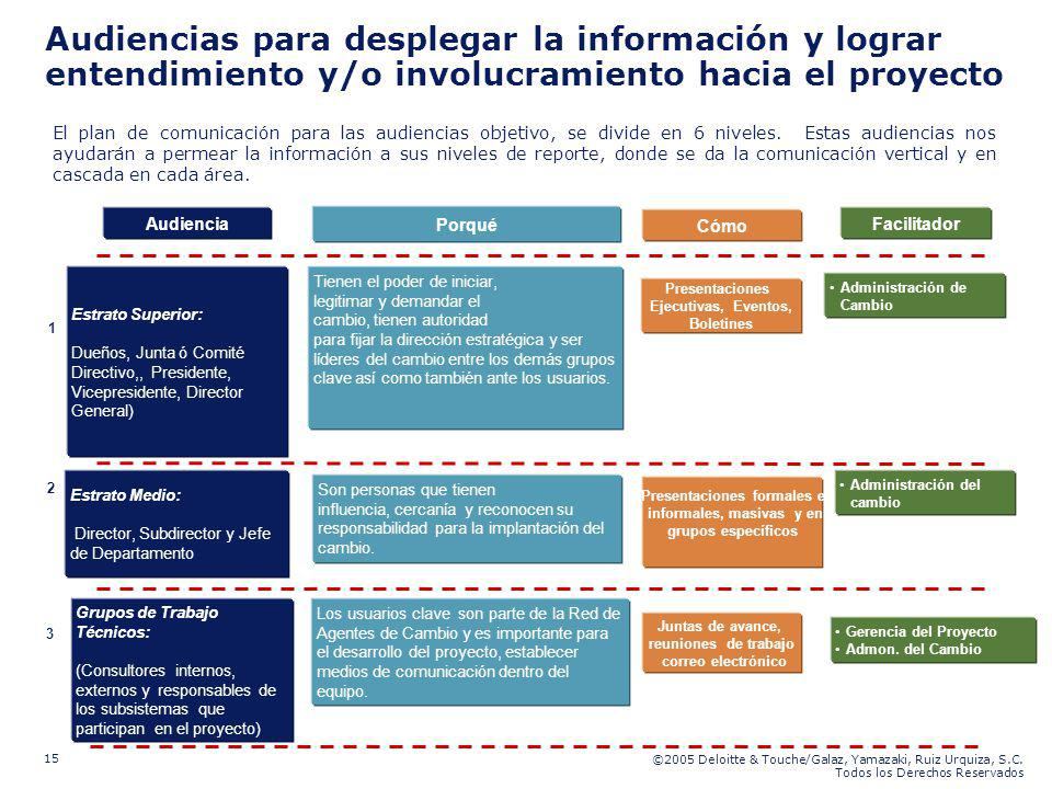 ©2005 Deloitte & Touche/Galaz, Yamazaki, Ruiz Urquiza, S.C. Todos los Derechos Reservados 15 Audiencias para desplegar la información y lograr entendi