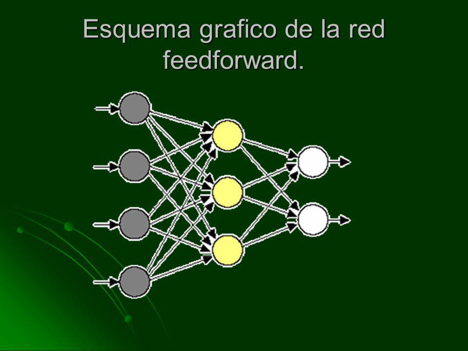 Esquema grafico de la red feedforward.