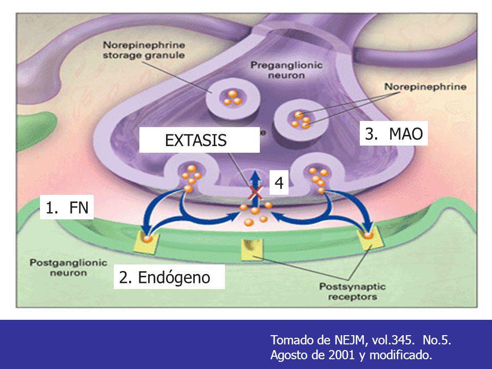 EXTASIS 1. FN 2. Endógeno 3. MAO 4 Tomado de NEJM, vol.345. No.5. Agosto de 2001 y modificado.
