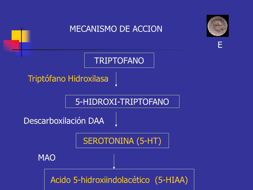 MECANISMO DE ACCION TRIPTOFANO 5-HIDROXI-TRIPTOFANO SEROTONINA (5-HT) Triptófano Hidroxilasa Descarboxilación DAA Acido 5-hidroxiindolacético (5-HIAA)