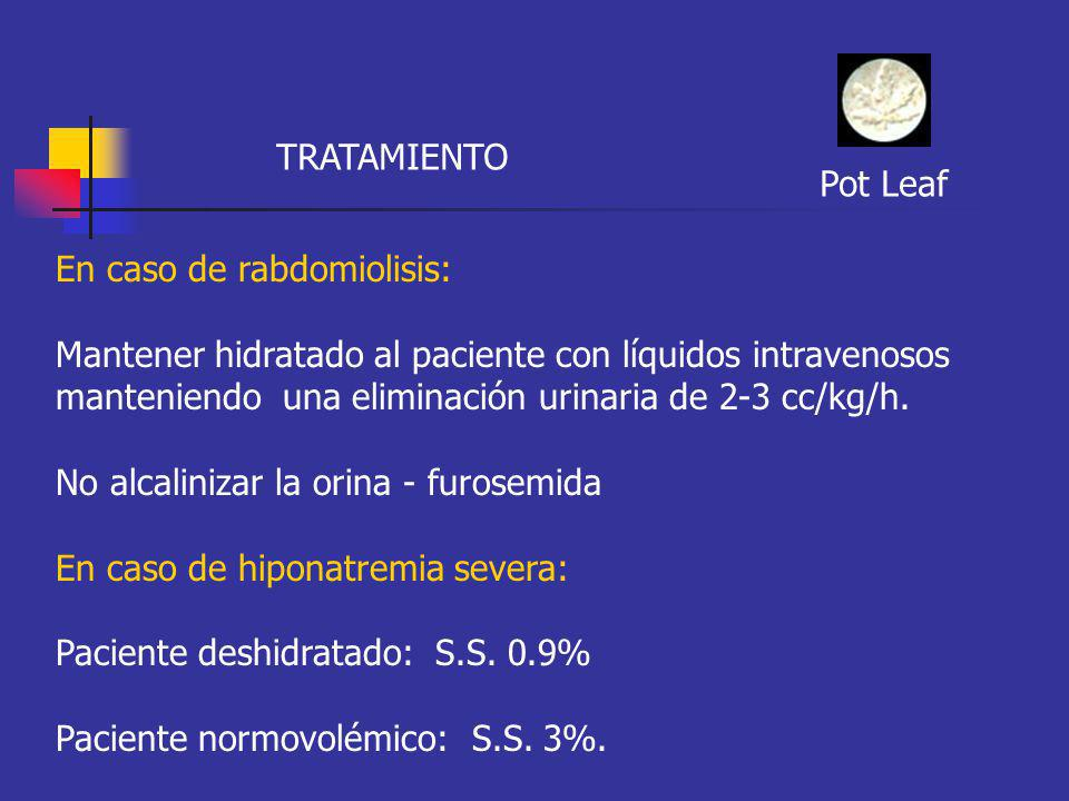 TRATAMIENTO Pot Leaf En caso de rabdomiolisis: Mantener hidratado al paciente con líquidos intravenosos manteniendo una eliminación urinaria de 2-3 cc