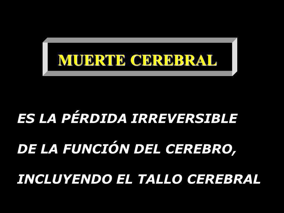 MUERTE CEREBRAL ES LA PÉRDIDA IRREVERSIBLE DE LA FUNCIÓN DEL CEREBRO, INCLUYENDO EL TALLO CEREBRAL