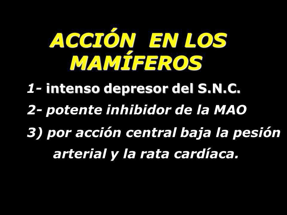 ACCIÓN EN LOS MAMÍFEROS intenso depresor del S.N.C. 1- intenso depresor del S.N.C. 2- potente inhibidor de la MAO. 3) por acción central baja la pesió