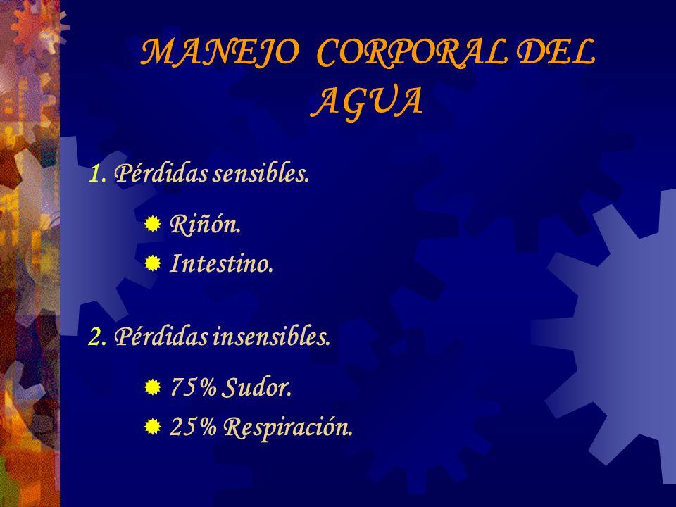 LÍQUIDOS DE MANTENIMIENTO Agua: 30 cc x Kg.Solución Salina 0.9% : 1000 cc.