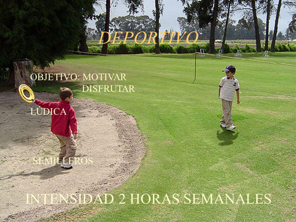 TORNEOS INFANTILES Y JUVENILES 1.DOS SEMESTRALES 2.PADRES E HIJOS REQUISITOS: SER SOCIO DEL CLUB 3.