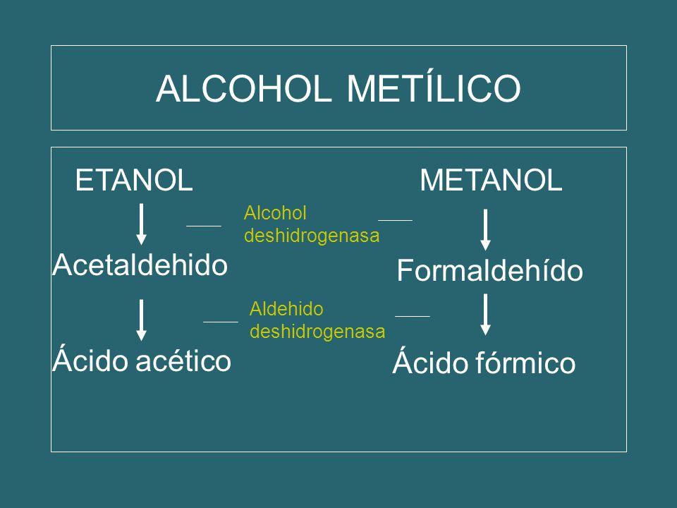 ALCOHOL METÍLICO ETANOL METANOL Acetaldehido Formaldehído Ácido acético Ácido fórmico Alcohol deshidrogenasa Aldehido deshidrogenasa