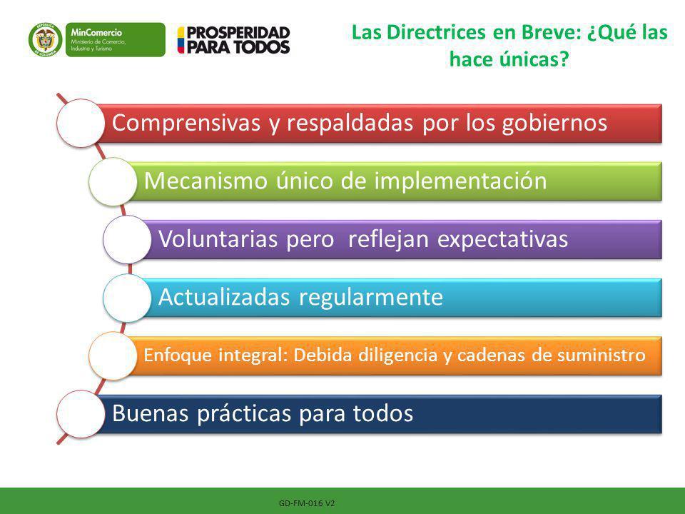 GD-FM-016 V2 Las Directrices en Breve: ¿Qué las hace únicas? Comprensivas y respaldadas por los gobiernos Mecanismo único de implementación Voluntaria