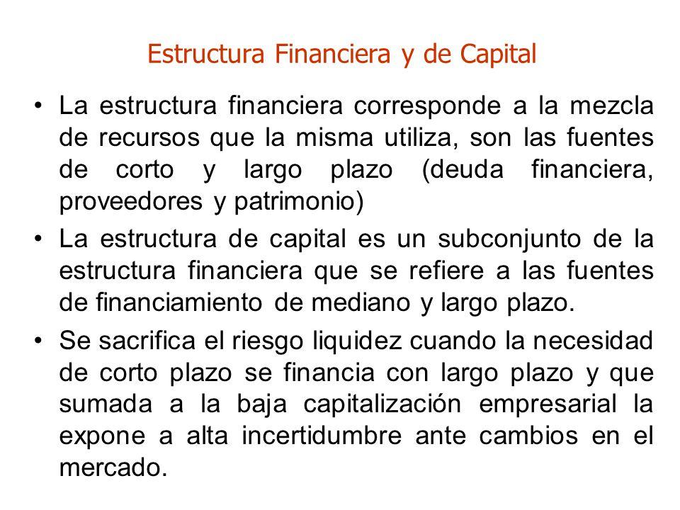 Estructura Financiera y de Capital La estructura financiera corresponde a la mezcla de recursos que la misma utiliza, son las fuentes de corto y largo