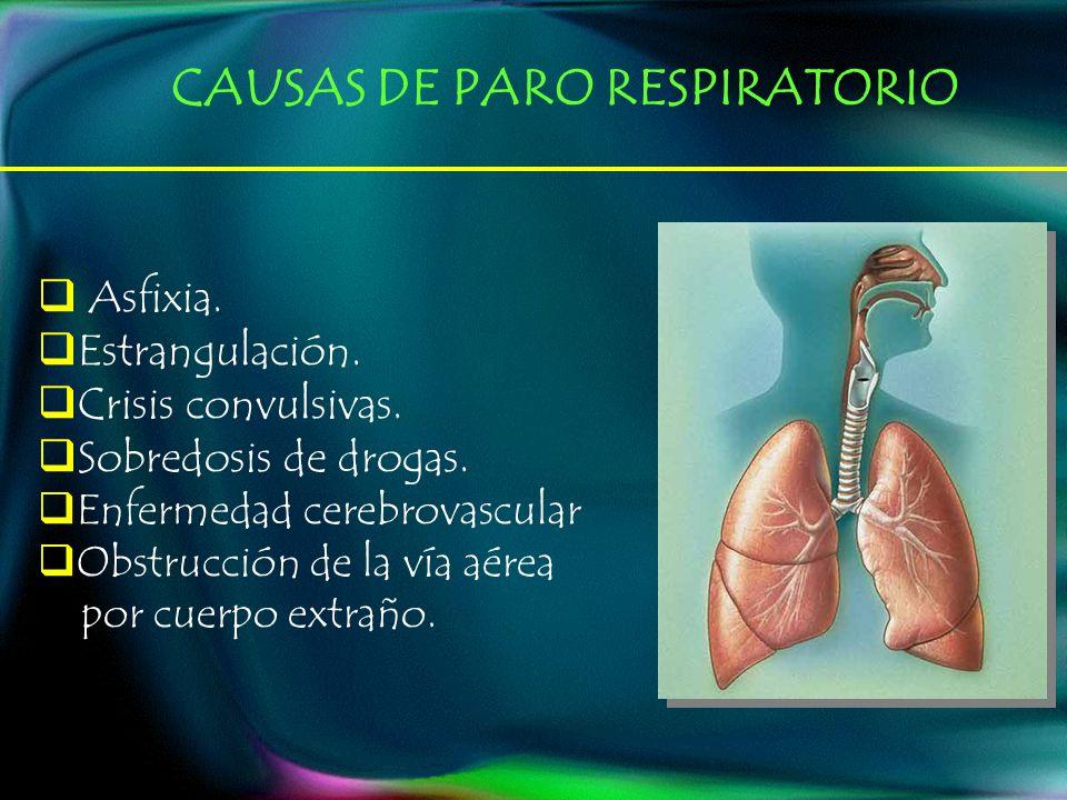 Asfixia. Estrangulación. Crisis convulsivas. Sobredosis de drogas. Enfermedad cerebrovascular Obstrucción de la vía aérea por cuerpo extraño. CAUSAS D