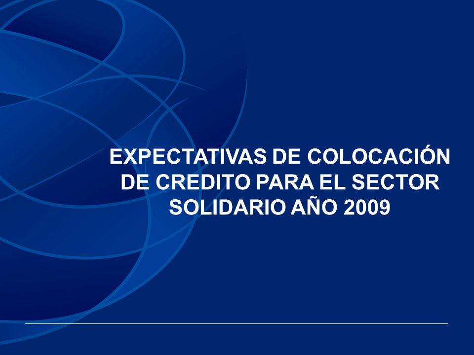 EXPECTATIVAS DE COLOCACIÓN DE CREDITO PARA EL SECTOR SOLIDARIO AÑO 2009