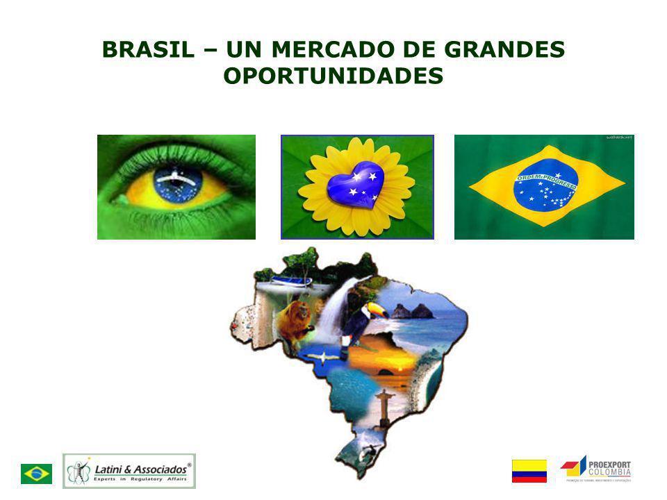 BRASIL – UN MERCADO DE GRANDES OPORTUNIDADES