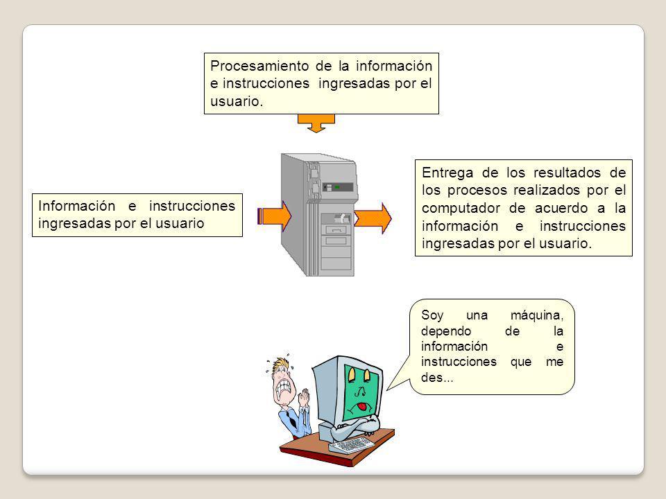 Procesamiento de la información e instrucciones ingresadas por el usuario. Información e instrucciones ingresadas por el usuario Entrega de los result