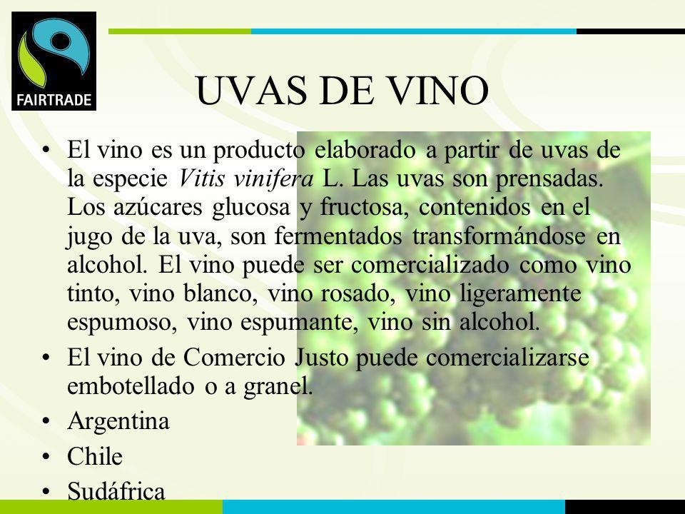 FLO International UVAS DE VINO El vino es un producto elaborado a partir de uvas de la especie Vitis vinifera L. Las uvas son prensadas. Los azúcares