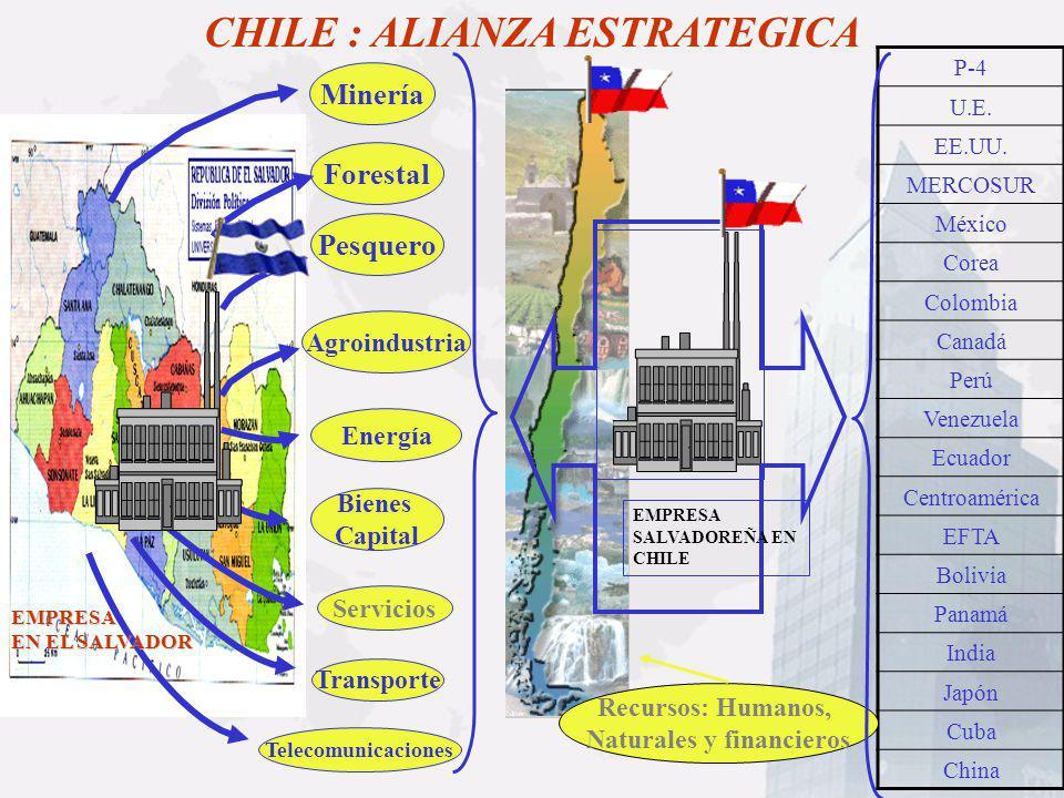 ForestalMinería Bienes Capital Servicios Transporte Telecomunicaciones CHILE : ALIANZA ESTRATEGICA Energía Pesquero Agroindustria P-4 U.E. EE.UU. MERC