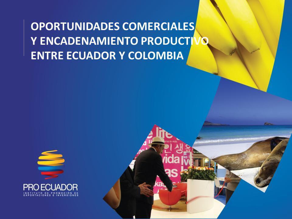 SECTORES Y PRODUCTOS CON POTENCIAL EN ECUADOR Y COLOMBIA Ecuador Vehículos Productos del mar (procesados) Café Aceites y grasas vegetales Telecomunicaciones y sonido Madera (muebles) Manufacturas de hierro o acero Fibras naturales y sintéticas (textiles) Colombia Vehículos Cosméticos Productos de aseo Farmacéuticos Energía eléctrica Textiles y confecciones Plásticos (formas primarias)