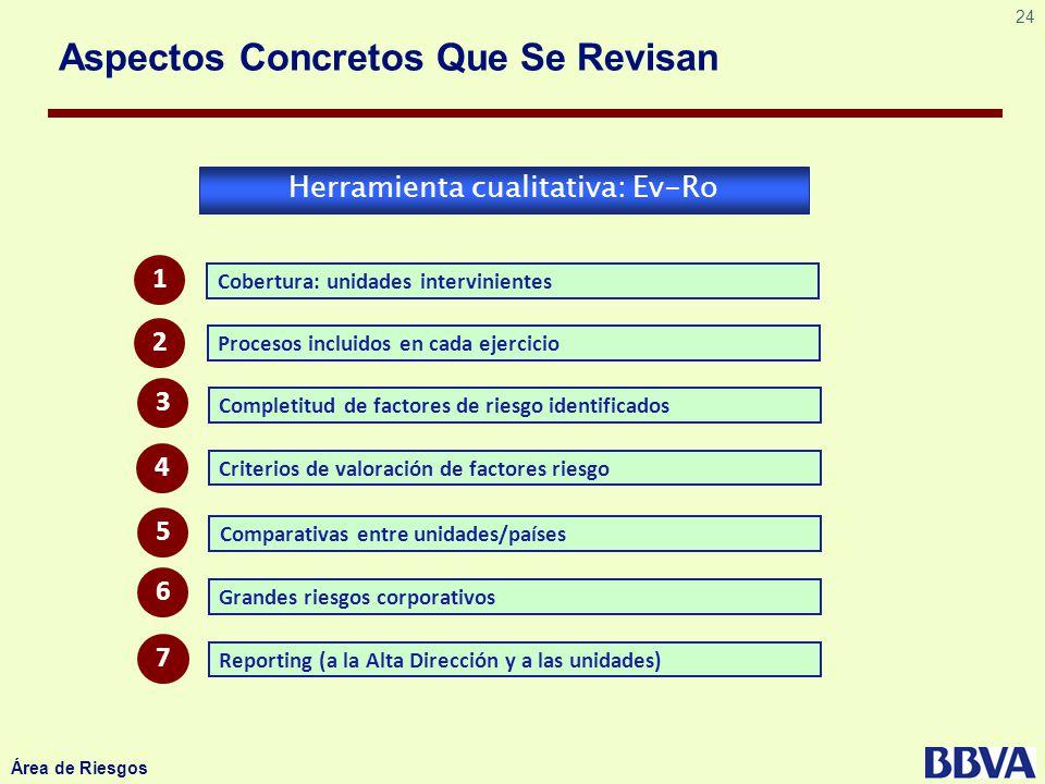 24 Área de Riesgos Aspectos Concretos Que Se Revisan Herramienta cualitativa: Ev-Ro Cobertura: unidades intervinientes Procesos incluidos en cada ejer