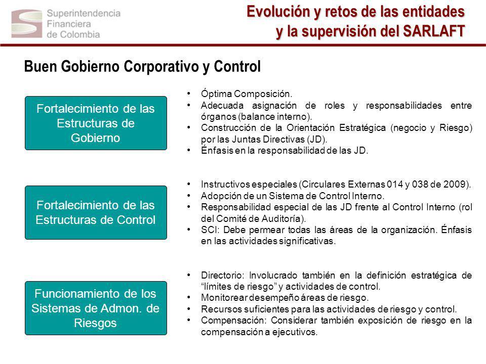 Buen Gobierno Corporativo y Control Óptima Composición.