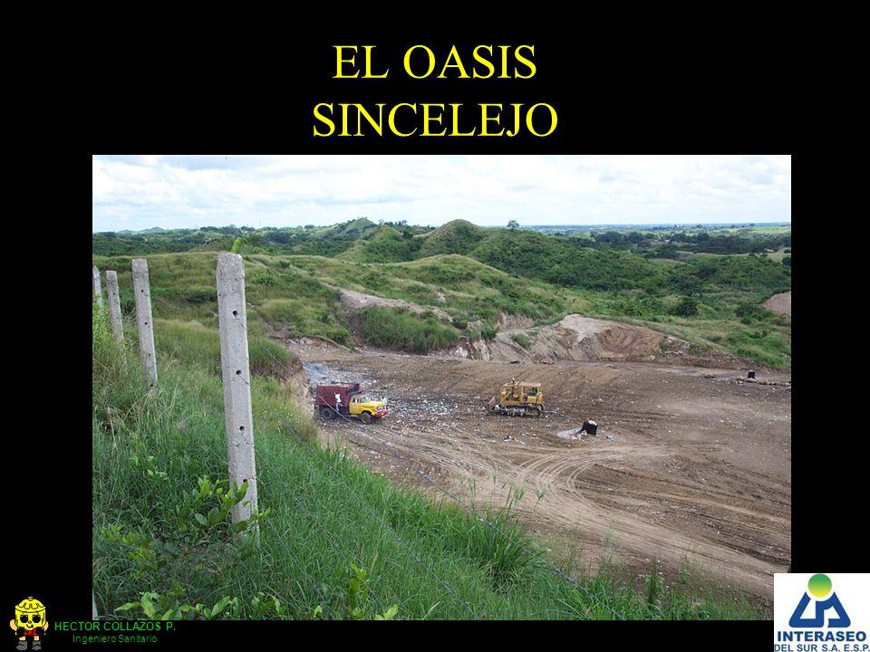 HECTOR COLLAZOS P. Ingeniero Sanitario EL OASIS SINCELEJO