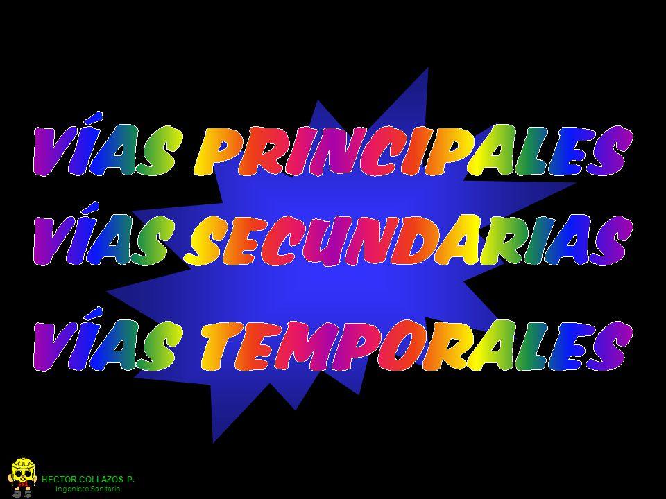 HECTOR COLLAZOS P.