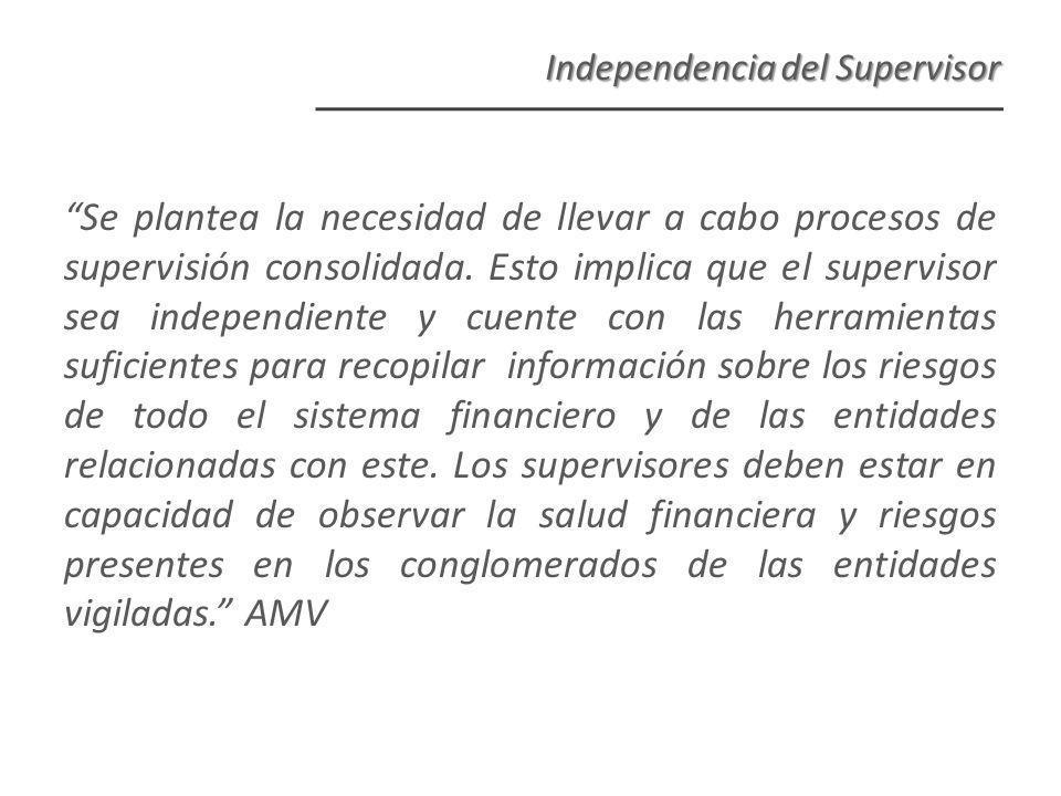 Se plantea la necesidad de llevar a cabo procesos de supervisión consolidada.
