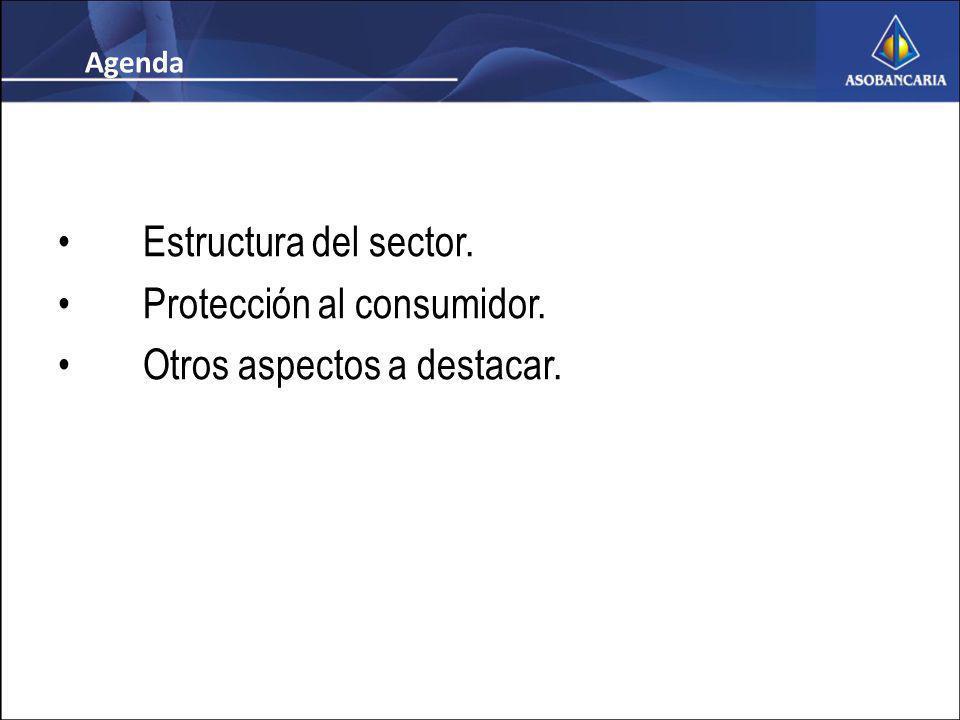 Estructura del sector. Protección al consumidor. Otros aspectos a destacar. Agenda