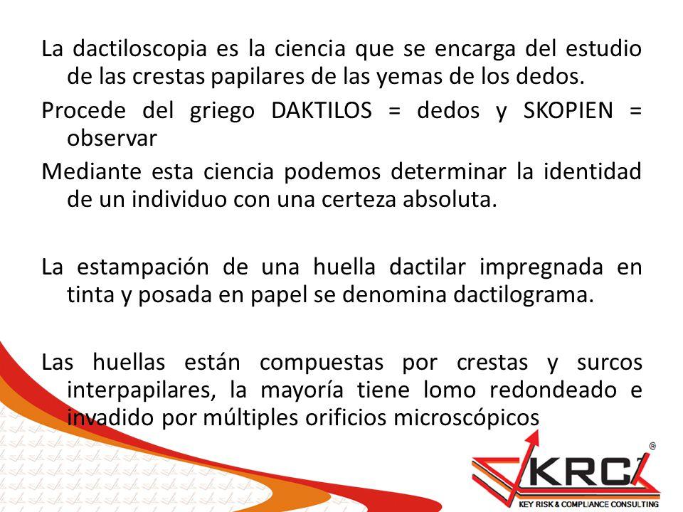 La dactiloscopia es la ciencia que se encarga del estudio de las crestas papilares de las yemas de los dedos. Procede del griego DAKTILOS = dedos y SK