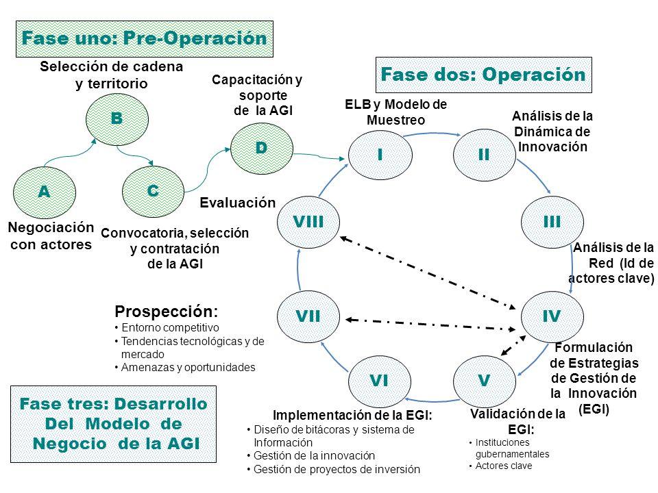 A B C VI I IV III V II Negociación con actores ELB y Modelo de Muestreo Análisis de la Dinámica de Innovación Capacitación y soporte de la AGI Selecci