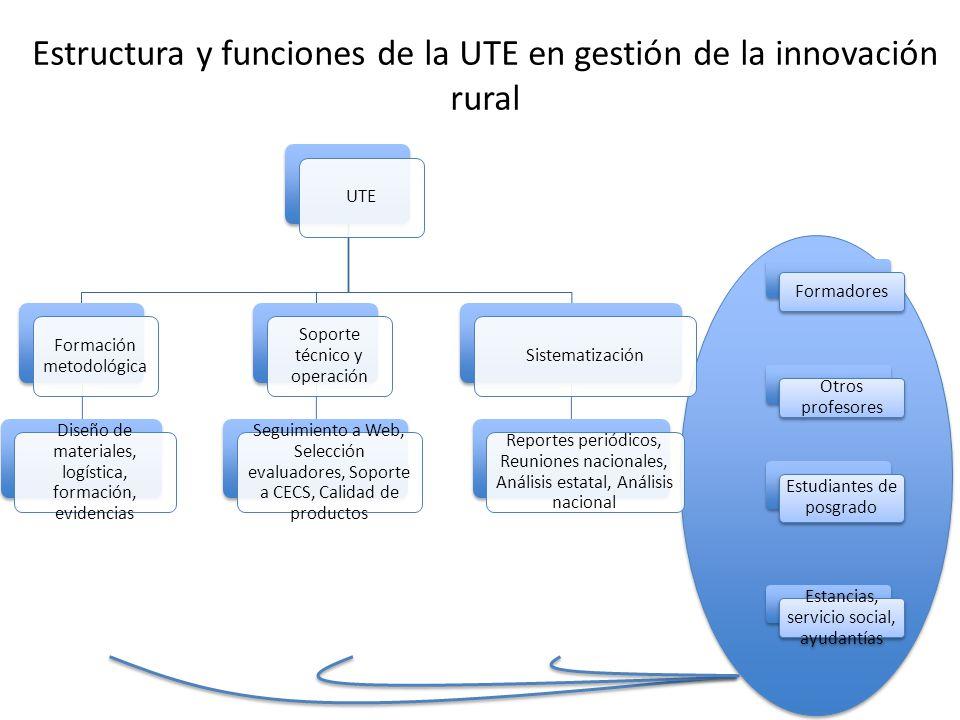 UTE Formación metodológica Diseño de materiales, logística, formación, evidencias Soporte técnico y operación Seguimiento a Web, Selección evaluadores