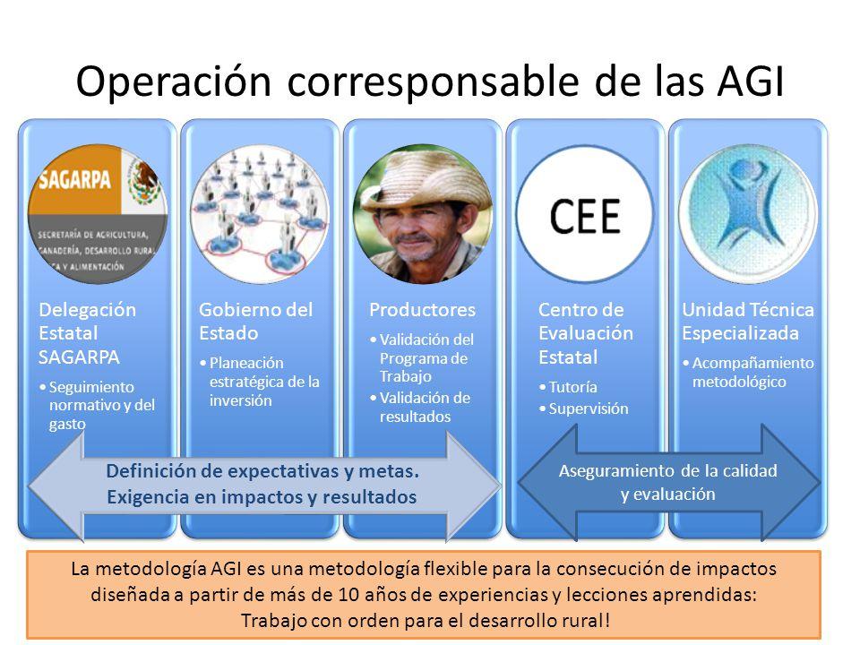 Operación corresponsable de las AGI Delegación Estatal SAGARPA Seguimiento normativo y del gasto Gobierno del Estado Planeación estratégica de la inve