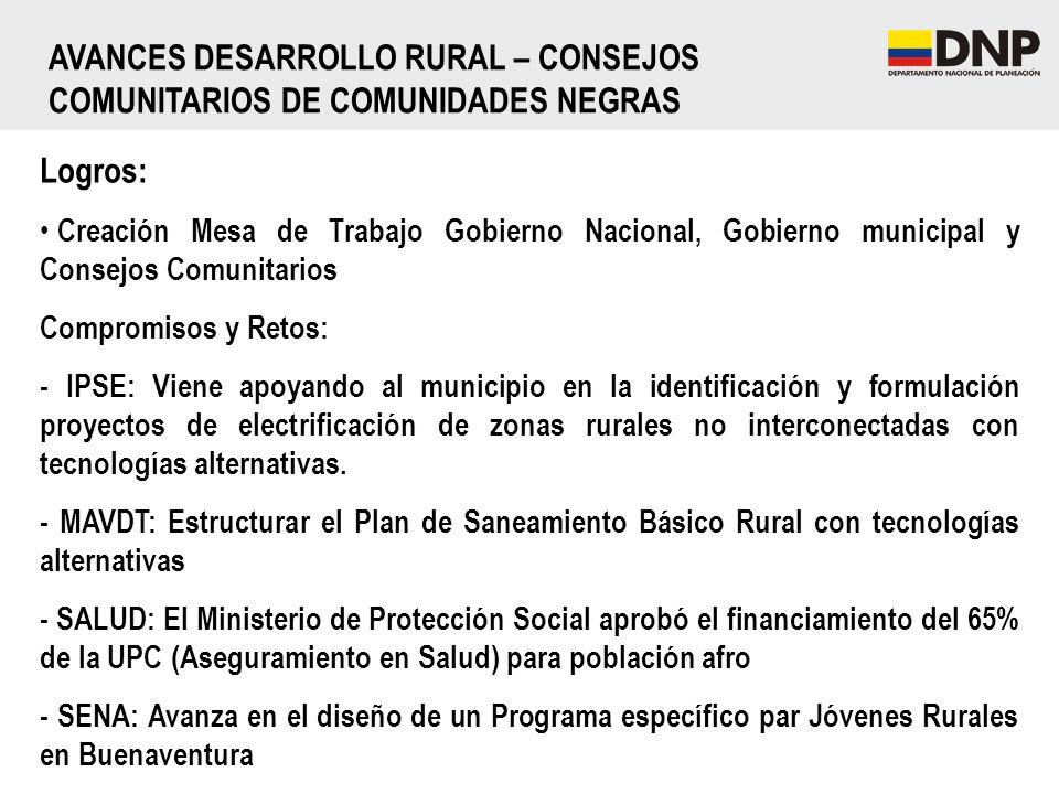 AVANCES DESARROLLO RURAL – CONSEJOS COMUNITARIOS DE COMUNIDADES NEGRAS Logros: Creación Mesa de Trabajo Gobierno Nacional, Gobierno municipal y Consej