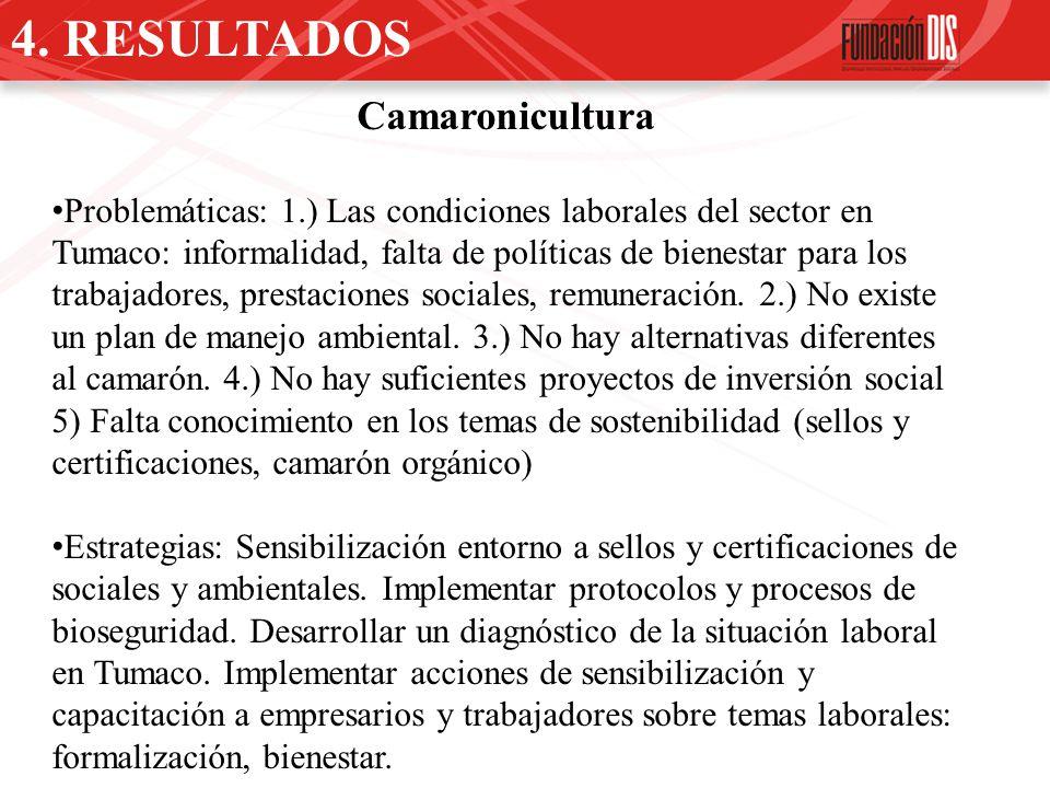 4. RESULTADOS Camaronicultura Problemáticas: 1.) Las condiciones laborales del sector en Tumaco: informalidad, falta de políticas de bienestar para lo